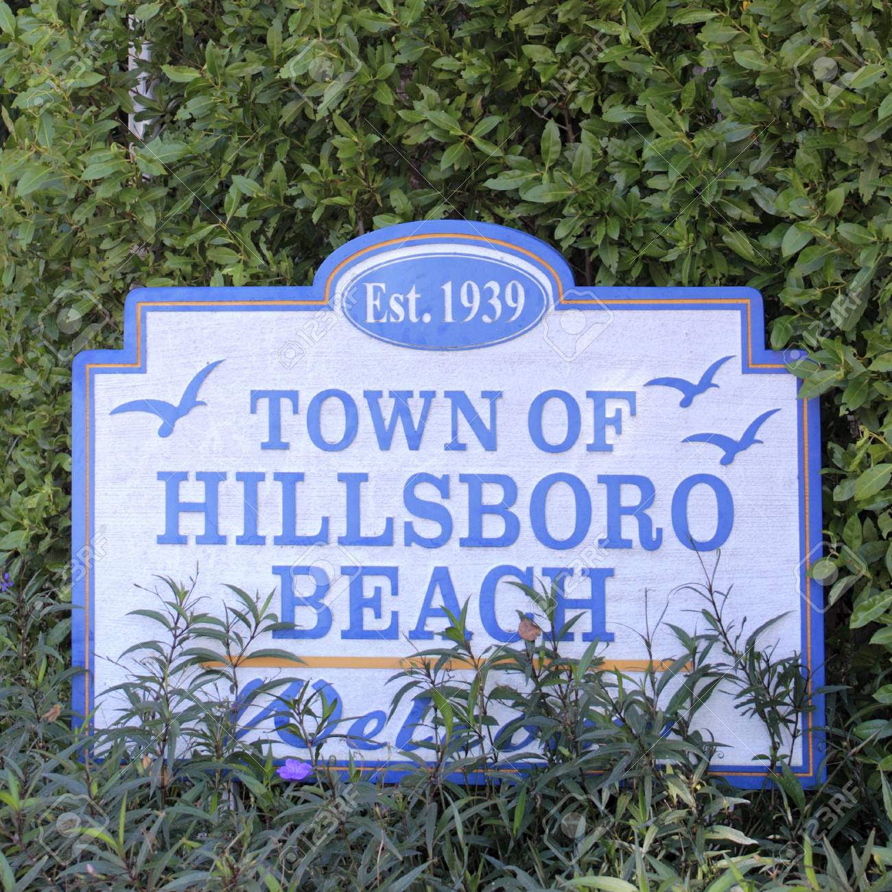55124277-hillsboro-beach-fl-usa-february-12-2014-established-1939-town-of-hillsboro-beach-decorated-sign-welc.jpg